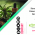 Kannalife Strengthening its Patent Portfolio of Novel Synthetic Cannabidiol Therapeutics
