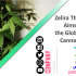 Zelira Therapeutics Aims to Disrupt the Global Medical Cannabis Market